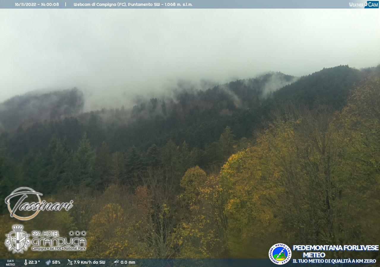 webcam campigna monte